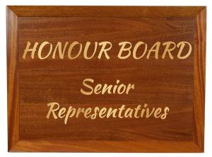Board_SenReps